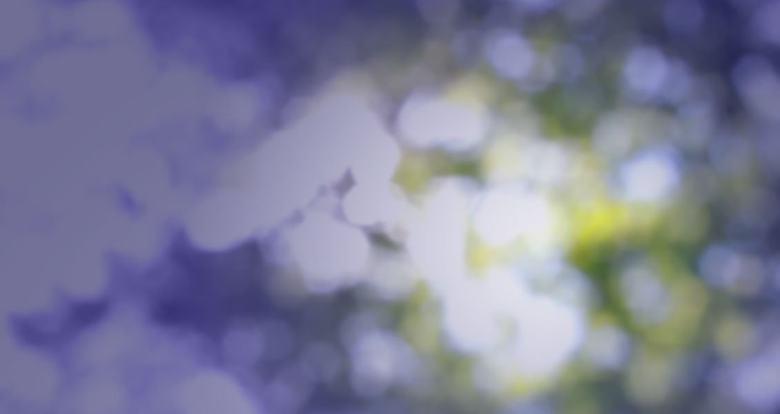 bokeh-bknd-purple1